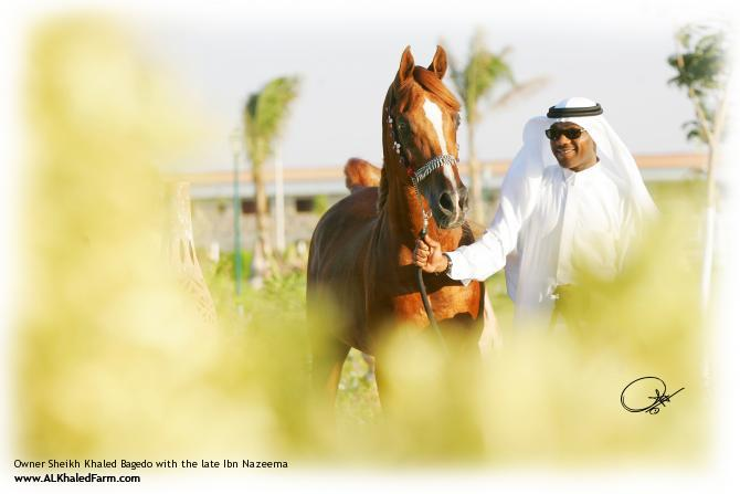 Owner Sheikh Khaled Bagedo with the late Ibn Nazeema